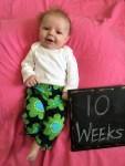 marlowe 10 weeks