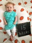 marlowe 15 weeks