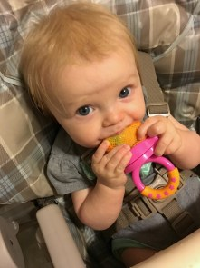 marlowe 7 months