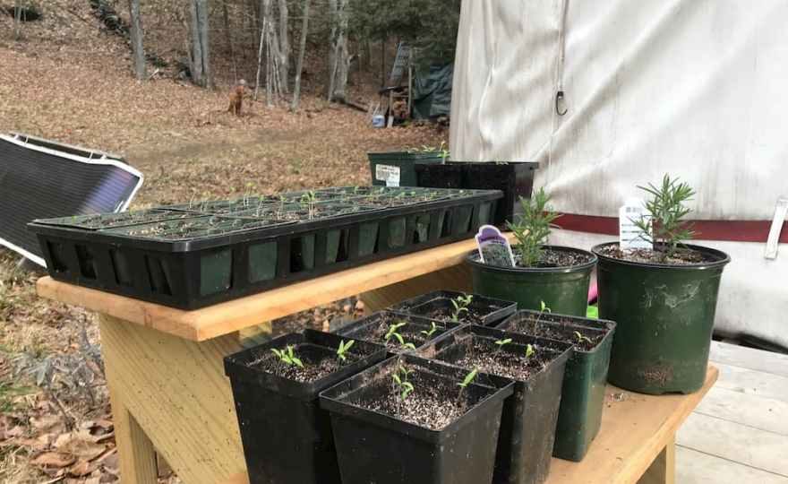 April Recap: Early Spring Projects and Milestones at the Yurt