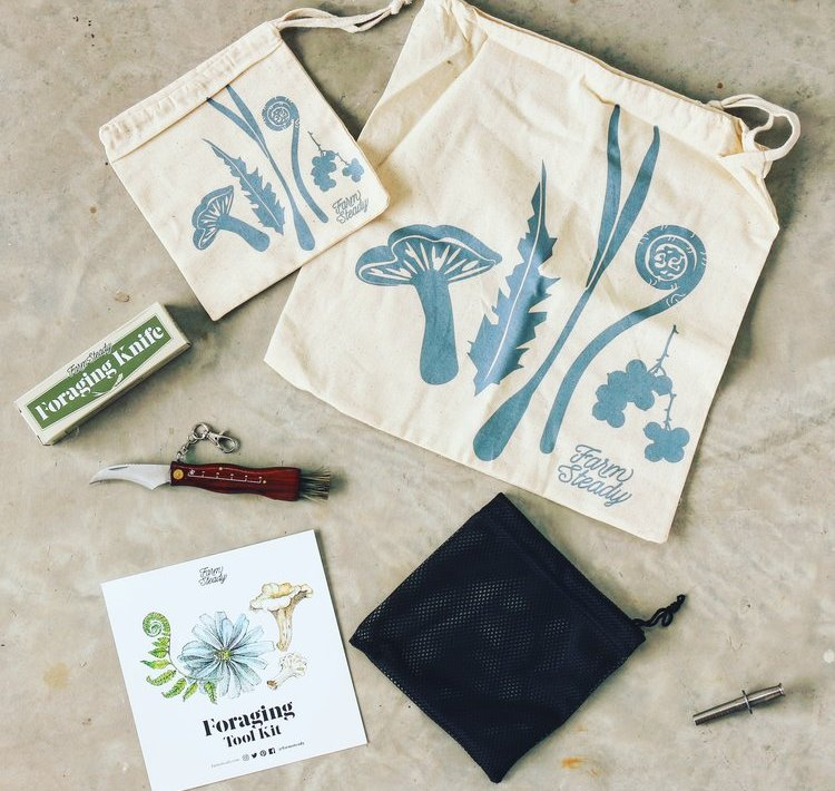 contents of the foraging kit from farmsteady