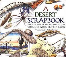 A Desert Scrapbook