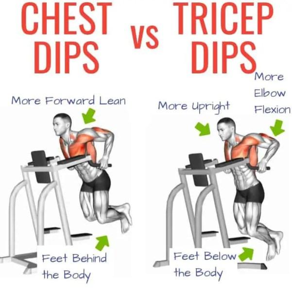 Chest-Dip-vs-tricep-dips