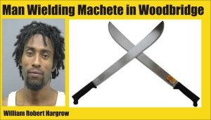 Man Wielding Machete in Woodbridge