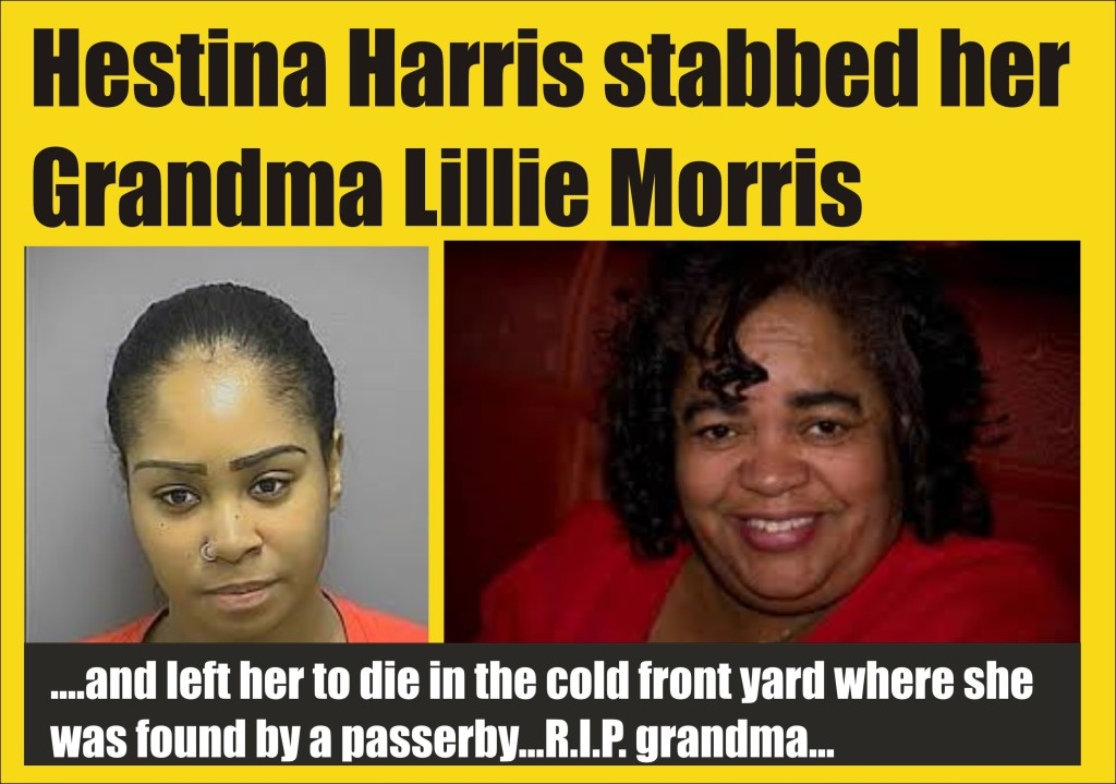 Hestina Harris charged with murder of grandmother in Frederick Md