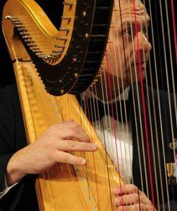 USAF Concert Band Senior Harpist Master Sgt. Eric Sabatino USAF photo by Senior Airman Steele C G Britton