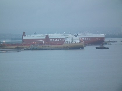 Baltimore harbor freight terminal is one of the busiest ports in the world. THE CHESAPEAKE TODAY photo
