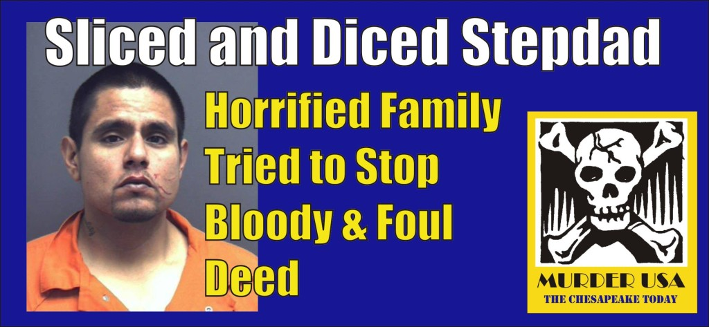 Sliced and Diced Stepdad