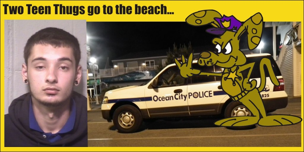 Austin Emerick gang visit Ocean City and steal ATM machine
