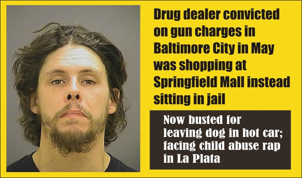 Brandon Proskey went shopping instead of to jail on gun rap