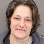 Lisa Kuczinski charged with murder.