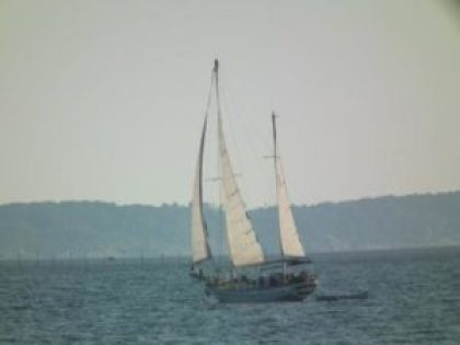 Weekend warrior. This sailboat heads out the Potomac for a weekend sail on the Chesapeake Bay. THE CHESAPEAKE TODAY photo