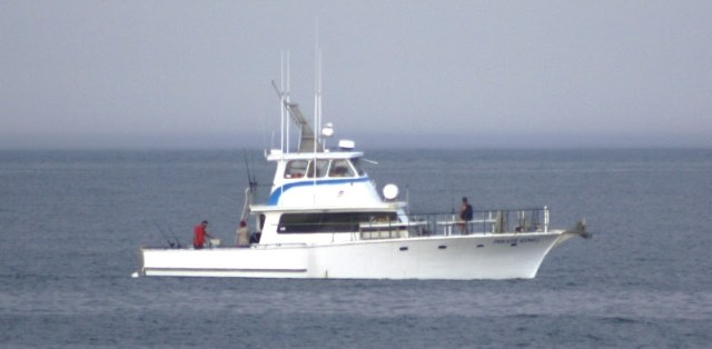 Weekend report charter fishing boat