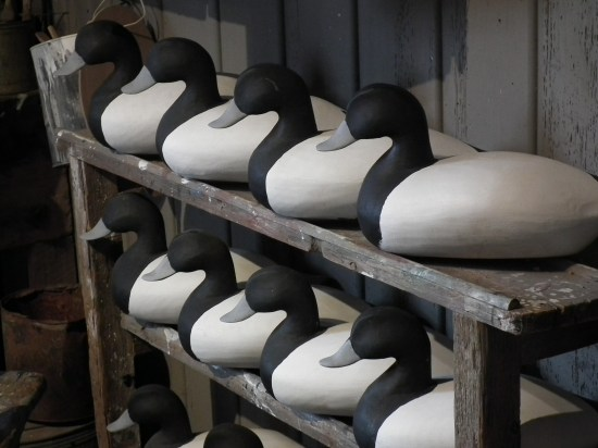 Decoy collection at Chesapeake Bay Maritime Museum St. Michaels, Md. THE CHESAPEAKE TODAY photo