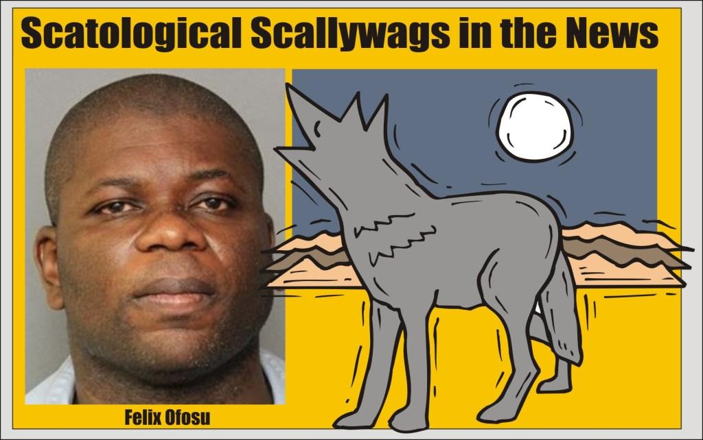Scatological Scallywags Felix Ofosu