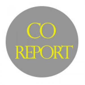 cropped-Co-Report-Pixel-Logo.jpg