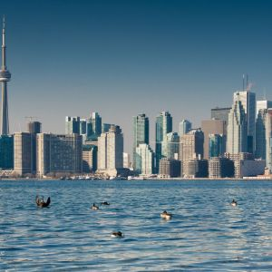 Things to Do In Toronto, Toronto Canada, What to Do in Canada, What to do in Toronto
