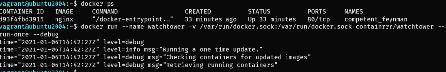 docker run watchtower with nginx excluded