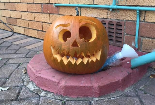 pumpkin-outside