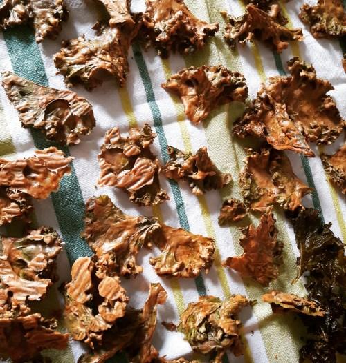 Fertige Kale Chips