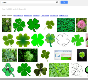 Google Image search for 'clover'
