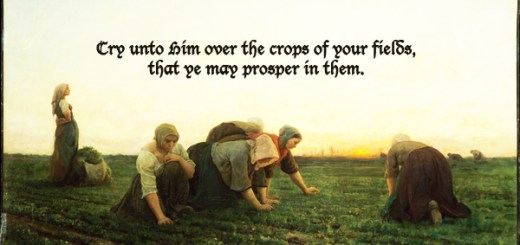 Cry unto Him over the crops of your field, that ye may prosper in them
