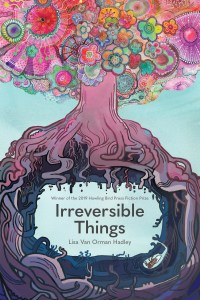 Irreversible Things cover