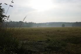 Morgendlicher Ausblick im Chorcamp