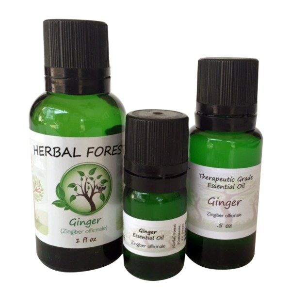 image of Herbal Forest ginger essential oil 1 oz, .5 oz and .17 oz