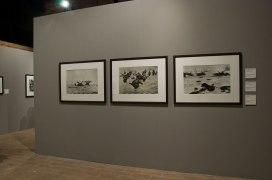 Retrospective la mostra dedicata a Robert Capa - foto di Maria Vittoria Malatesta Pierleoni (10)