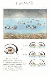 Fantastici pesci a forma di occhio in una pagina del Codex Seraphinianus