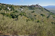 I-Sentieri-nella-Fascia-Olivata-the-mag-46 (8)