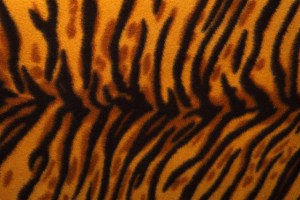 tigermuster animal prints