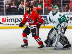 Rockford IceHogs William Pelletier