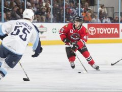 The Rink 30864422477_12d647db30_h-e1542042650432 Rockford IceHogs Sweep Weekend Road Games Rockford IceHogs Justin Auger Joni Tuulola gustav Forsling Collin Delia Carl Dahlstrom Anton Forsberg