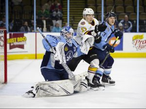 Wolves at Admirals