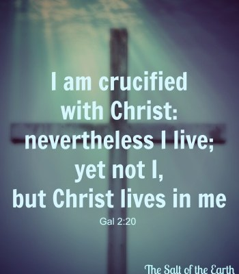 Crucified with Christ, the salt of the earth