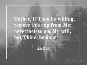The battle in the garden of Getsemane, Father if Thou be willing remove this cup from Me