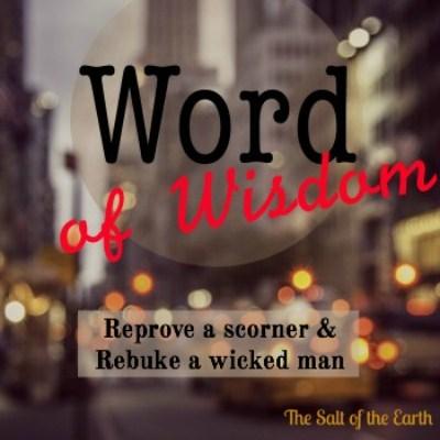 reprove a scorner and rebuke a wicked man