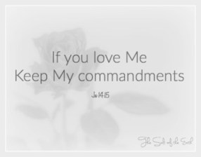 the two great commandments, If you love Me keep My commandments