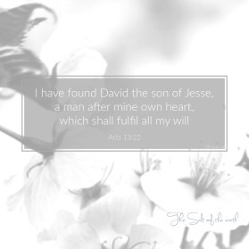 David a man after Gods heart