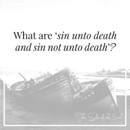 sin unto death and sin not unto death'