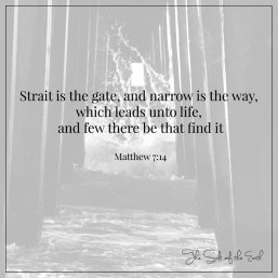 strait is the gate to life and narrow the path
