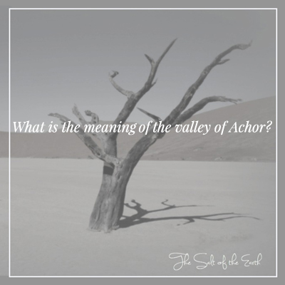 Achor meaning