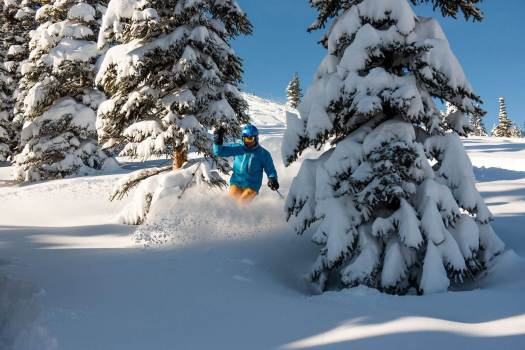 Ski Marmot Basin. Powder Alliance. Several new resorts join the Powder Alliance for 2018-19 ski season: