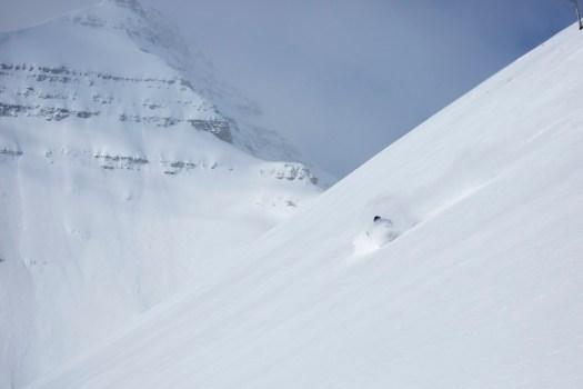 Castle Mountain Resort. Powder Alliance. Several new resorts join the Powder Alliance for 2018-19 ski season:
