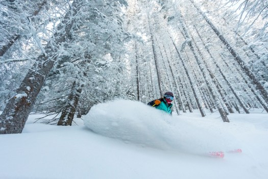 Skiing the trees in Taos. Photo: Ski Taos. Taos Regional Airport Launches Taos Air – an Air Service to Dallas, Austin