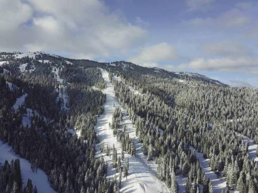 Snowmass Tamarack. Snowmass Opens Thanksgiving Day with 570 Acres of Terrain. Photo: Aspen Skiing Company.