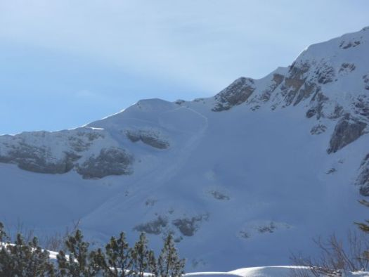 Fig. 2: Remote triggered slab avalanche on the northwest slope of the canine (2212 m, Sisikon, UR). The avalanche was triggered by touring people. Fortunately, these were still outside the sliding snow masses, as they released the slab. So they were not carried away (Photo: P. Fähndrich, 04.01.2019). SLF.ch. Avalanches claimed two lives in Switzerland due to dangerous conditions.