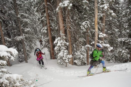 Racers in Aspen Highlands by the forests. Photo: Aspen Skiing Company. Audi Power of Four Ski Mountaineering Race Mar. 2-3. New United States Ski Mountaineering Association National Championship.